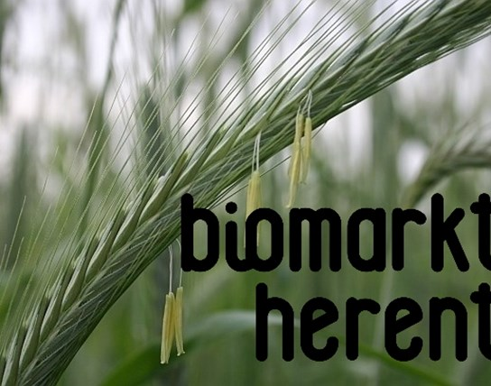 Biomarkt Herent